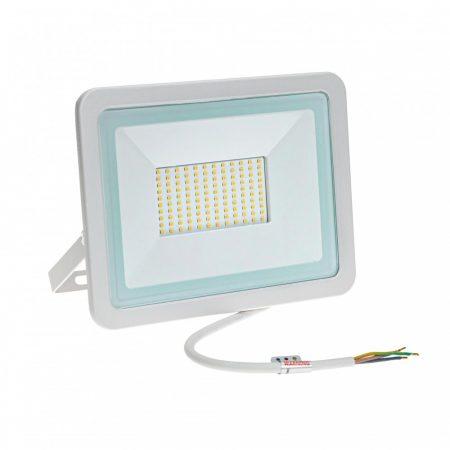 NOCTIS LUX 2 SMD 230V 100W IP65 CW fehér