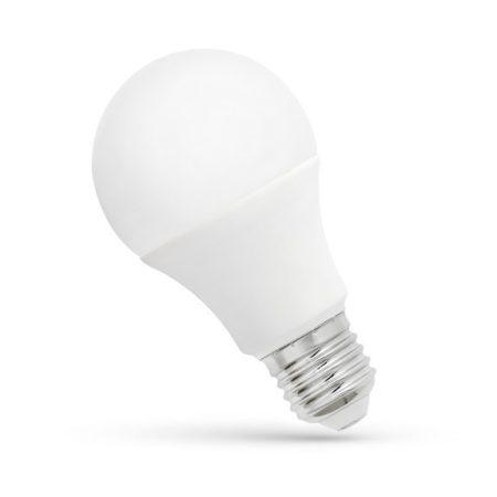 LED GLS E27 24V 10W WW